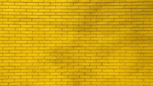 Walls For Women