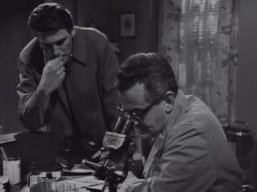 Dark Shadows 1967 Imdb Tv Show: Season 3 – Episode DS-242