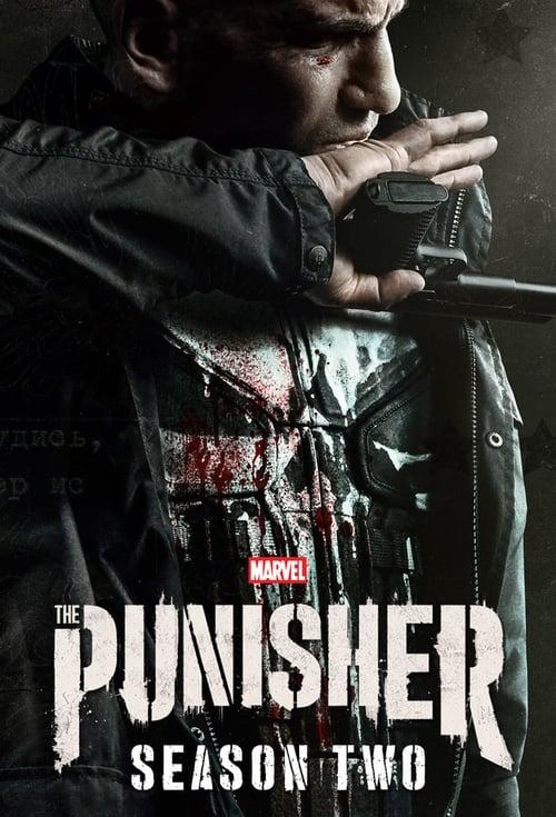 Banner of Marvel's The Punisher