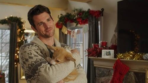 A Very Corgi Christmas English Full Movie Watch Online