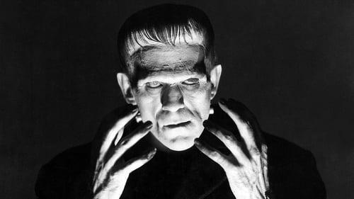 Subtitles Frankenstein (1931) in English Free Download   720p BrRip x264