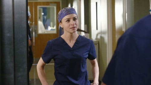Grey's Anatomy - Season 12 - Episode 8: Things We Lost in the Fire