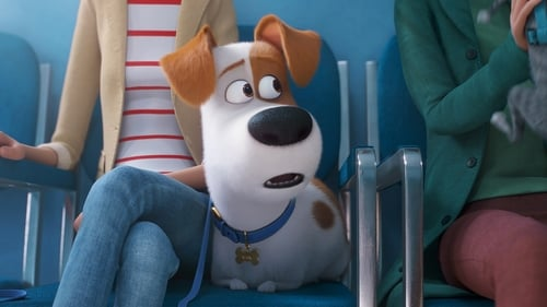 The Secret Life of Pets 2 (2019), film animat online subtitrat in Romana
