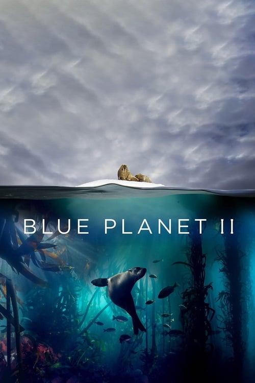 Blue Planet II : One Ocean & The Deep