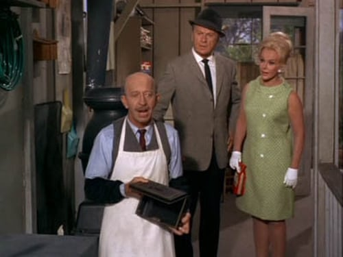 Green Acres: Season 3 – Épisode Not Guilty