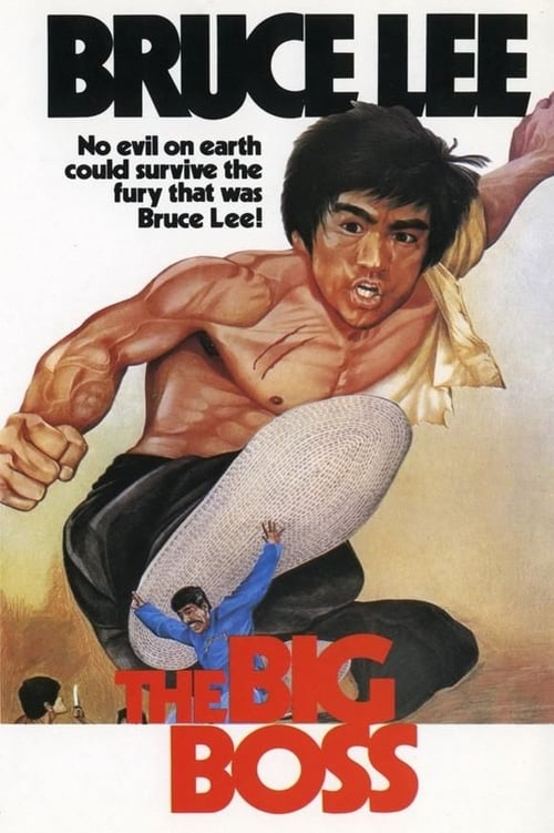 Download The Big Boss (1971) Full Movie