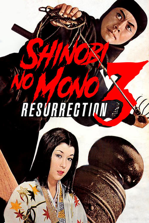 Shinobi no Mono 3: Resurrection (1963)