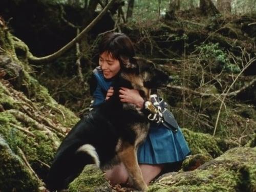 Super Sentai: Chouriki Sentai Ohranger – Épisode Mirage! The Dog of the Gods