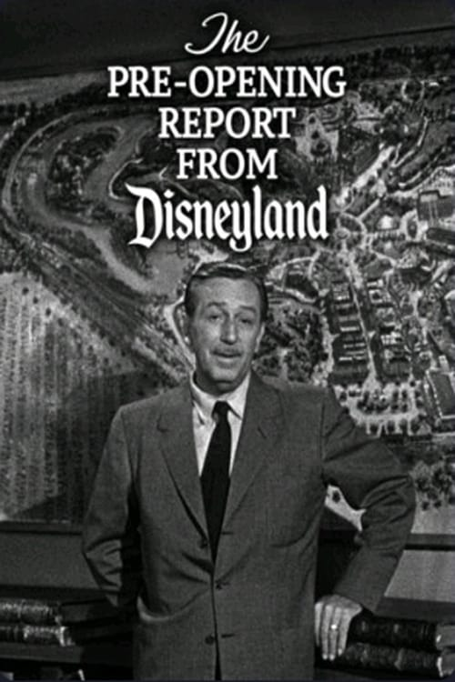 The Pre-Opening Report from Disneyland