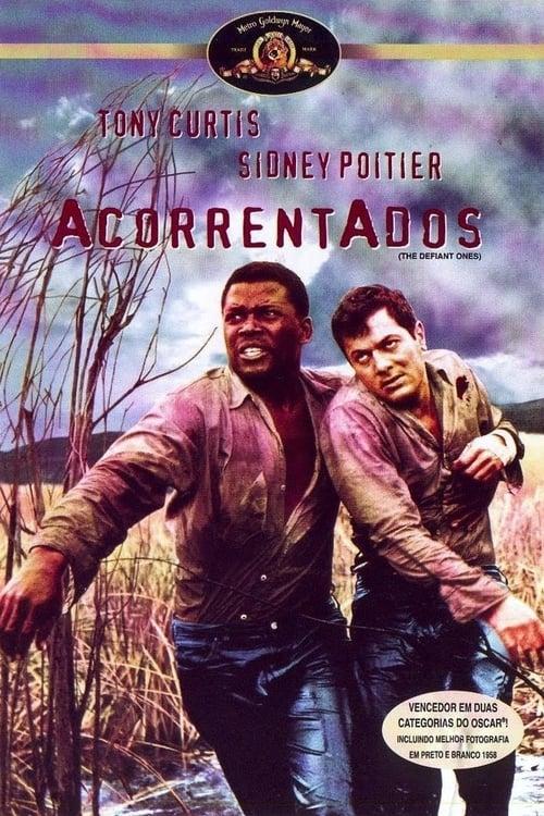 Baixar Do Filme Acorrentados Com Legendas Em Português