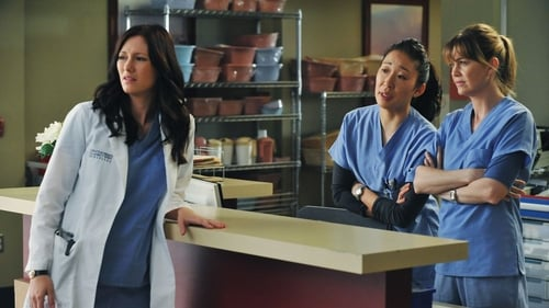 Grey's Anatomy - Season 7 - Episode 14: P.Y.T. (Pretty Young Thing)