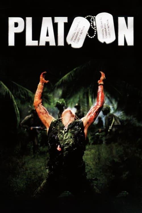 Assistir Platoon - HD 720p Dublado Online Grátis HD