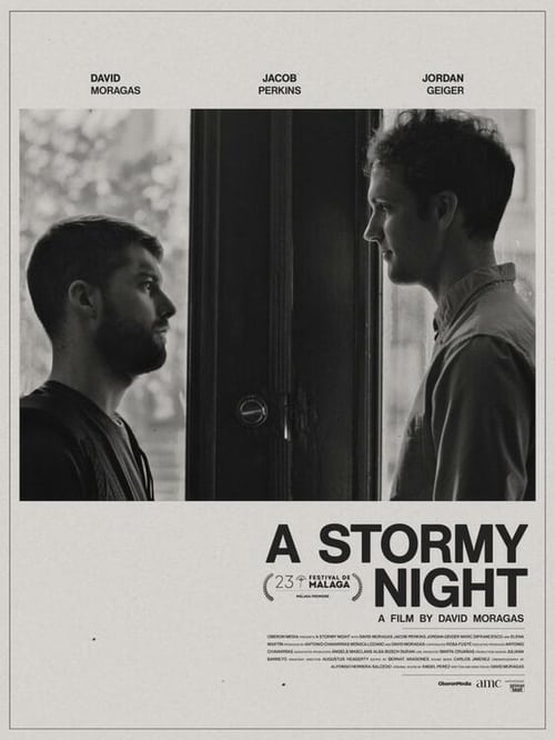 Watch A Stormy Night Movie Online Free Download