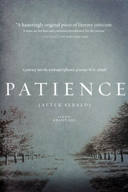 Largescale poster for Patience (After Sebald)