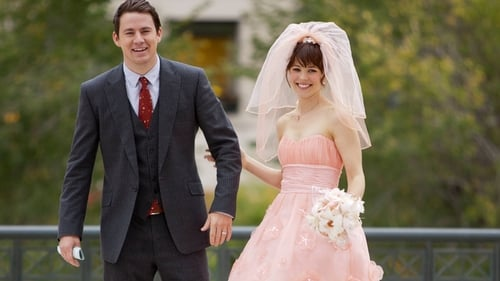 Subtitles The Vow (2012) in English Free Download | 720p BrRip x264
