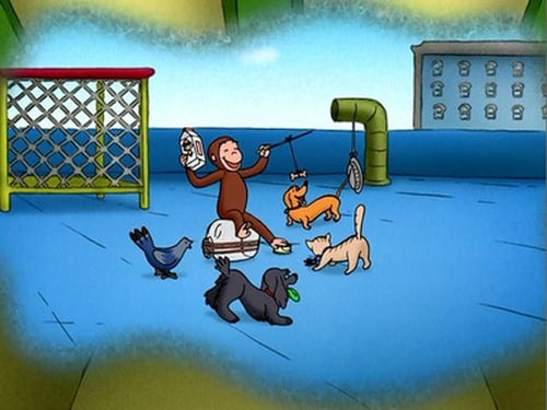 Curious George 2006 720p Webdl: Season 1 – Episode The All-Animal Recycled Band