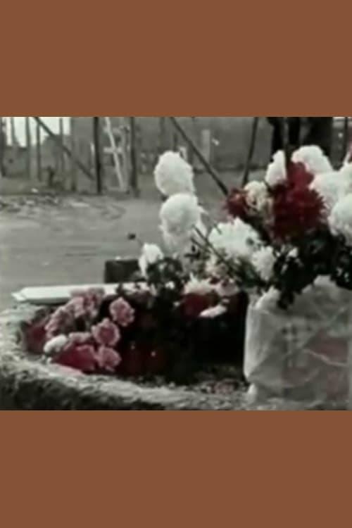 Mira La Película Così venne ucciso Pasolini Gratis