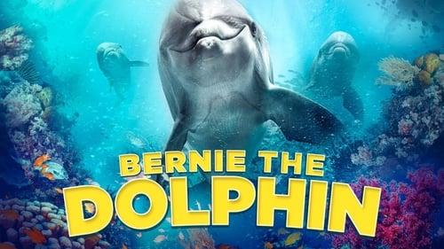 Bernie The Dolphin เบอร์นี่ โลมาน้อย หัวใจมหาสมุทร