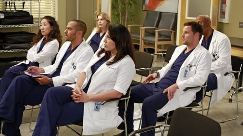 Grey's Anatomy - Season 9 - Episode 20: She's Killing Me