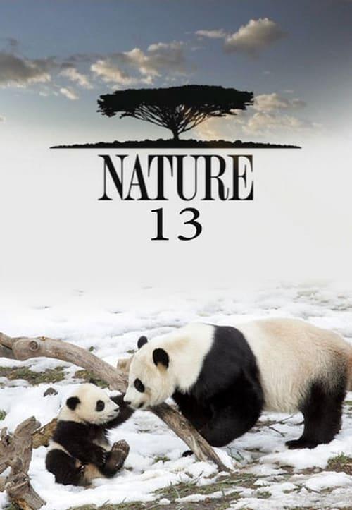 Nature: Season 13