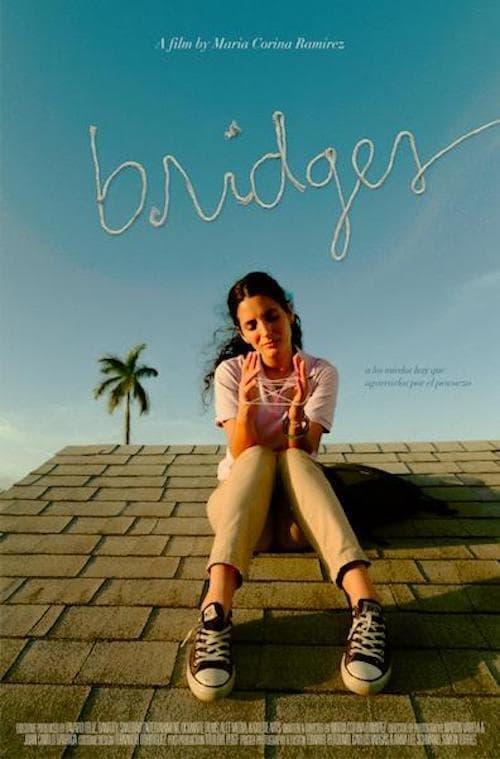 Download Bridges HD 1080p