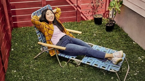 Awkwafina is Nora From Queens (2020)