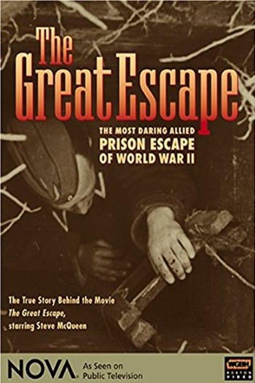 Ver pelicula Great Escape Online