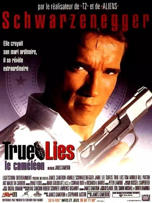 Visualiser True Lies (1994) streaming film en français