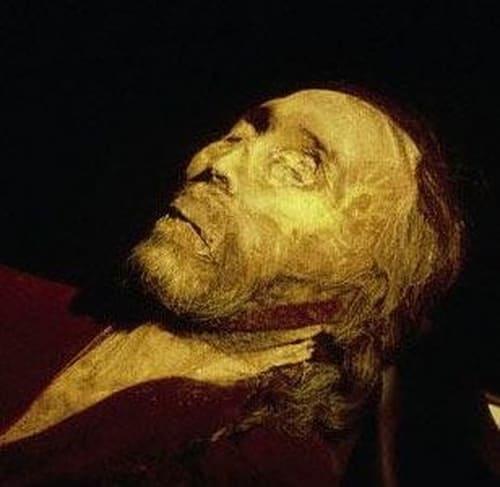 NOVA: Season 33 – Episode The Perfect Corpse