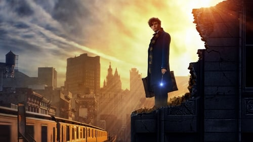 Fantastic Beasts and Where to Find Them watch online