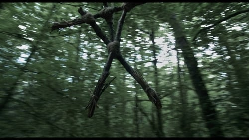 Curse of the Blair Witch -  - Azwaad Movie Database