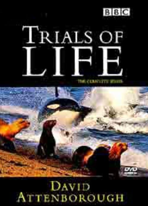 Ver pelicula The Trials of Life Online