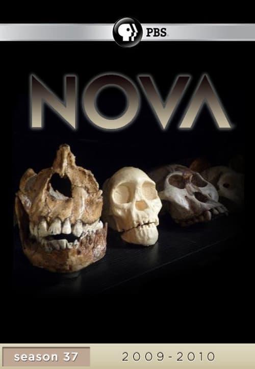 NOVA: Season 37