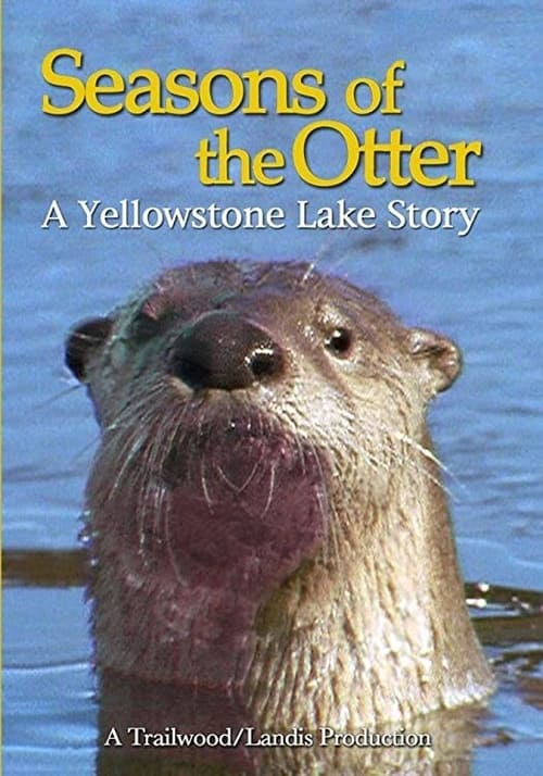 undefined ( Seasons of the Otter )
