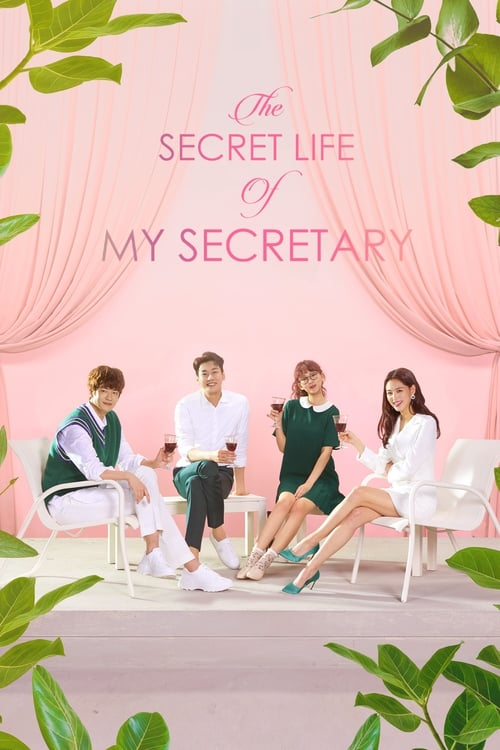 The Secret Life of My Secretary (2019)