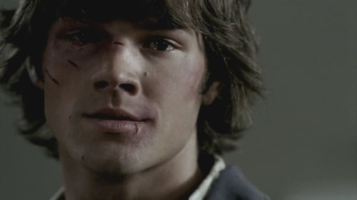 supernatural - Season 2 - Episode 1: In My Time of Dying