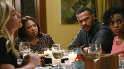 Grey's Anatomy: Season 12 – Episode Guess Who's Coming to Dinner?