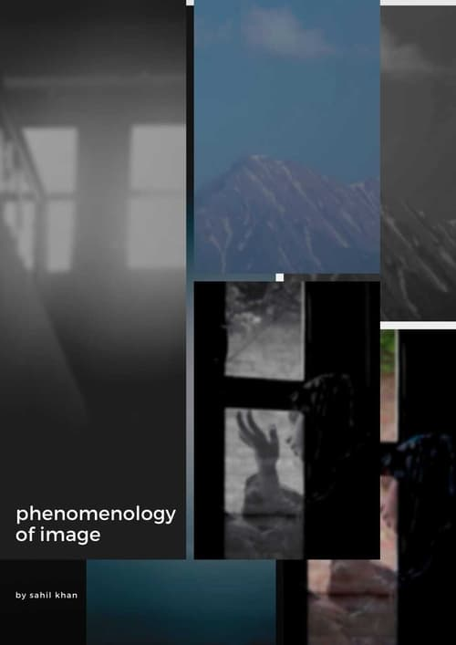 Phenomenology of Image
