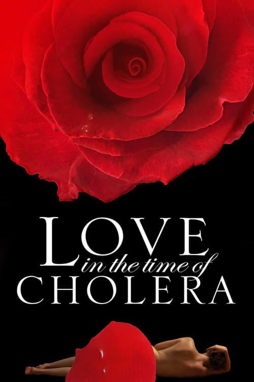 Regarder L'Amour aux temps du choléra (2007) streaming film en français