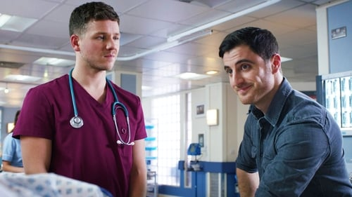 Holby City: Series 18 – Episode A Partnership, Literally