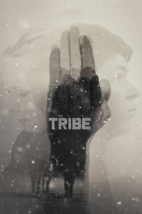 Download The Tribe (2014) Full Movie
