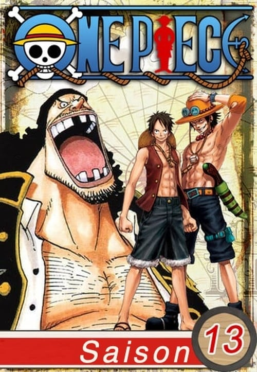 One Piece: Saison 13