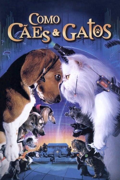 Assistir Como Cães e Gatos - HD 720p Dublado Online Grátis HD