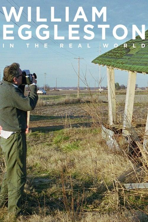 William Eggleston in the Real World (2005) - FilmAffinity