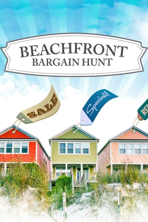 Beachfront Bargain Hunt (2013)