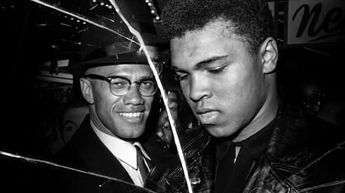 Subtitles Blood Brothers: Malcolm X and Muhammad Ali (2021) in English Free Download | 720p BrRip x264