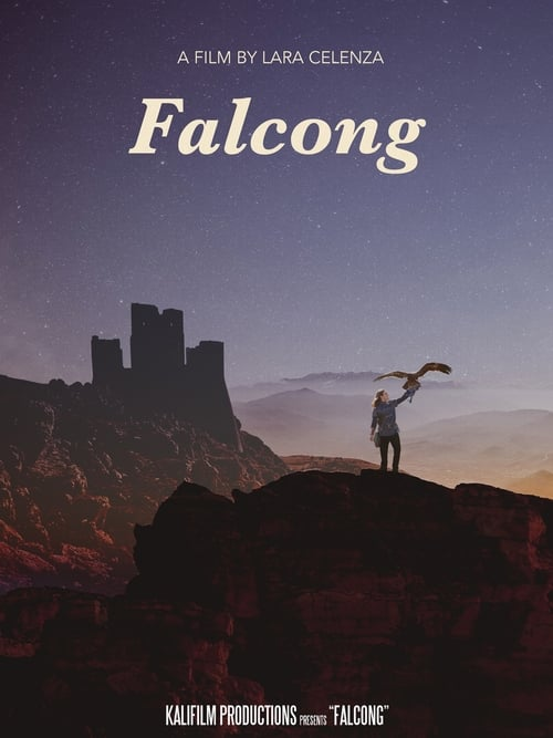 Filme Falcong Completamente Grátis
