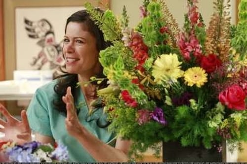 Grey's Anatomy - Season 4 - Episode 12: Where the Wild Things Are