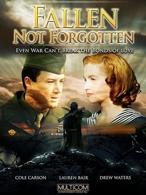 Everyman's War (2009) Poster