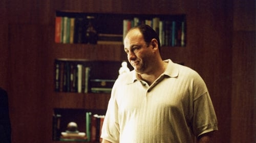 The Sopranos: Season 4 – Episode Calling All Cars